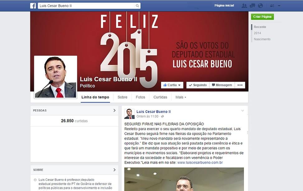 Criação de site - Gestão de Redes Sociais - Deputado Luis Cesar Bueno