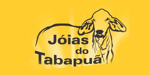 Condomínio Jóias do Tabapuã